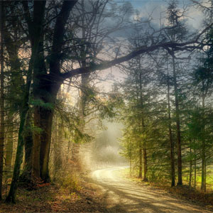 Beltane Nature Walk