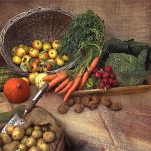 Samhain Fruits & Vegetables