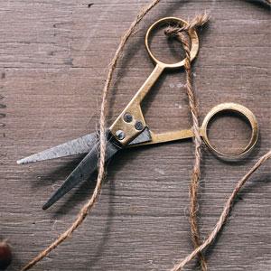 Scissors and Twine